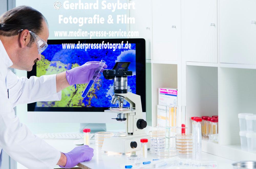 Hygienekontrolle im Labor mit Digitalmikroskop
